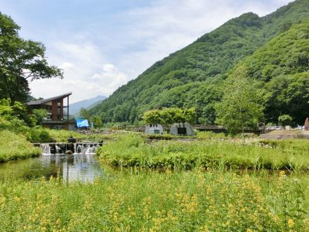 ミニ尾瀬公園写真
