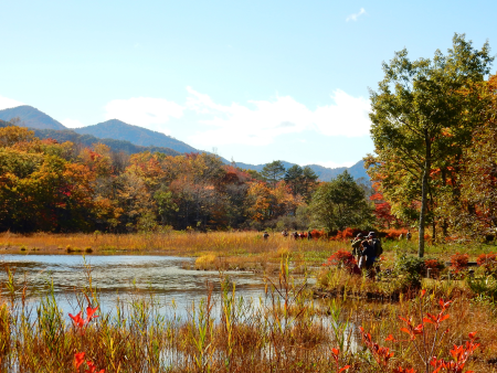 紅葉と蕎麦をめぐるコース(下郷町)写真