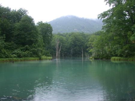 浅草岳 写真