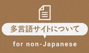 多言語サイトについて