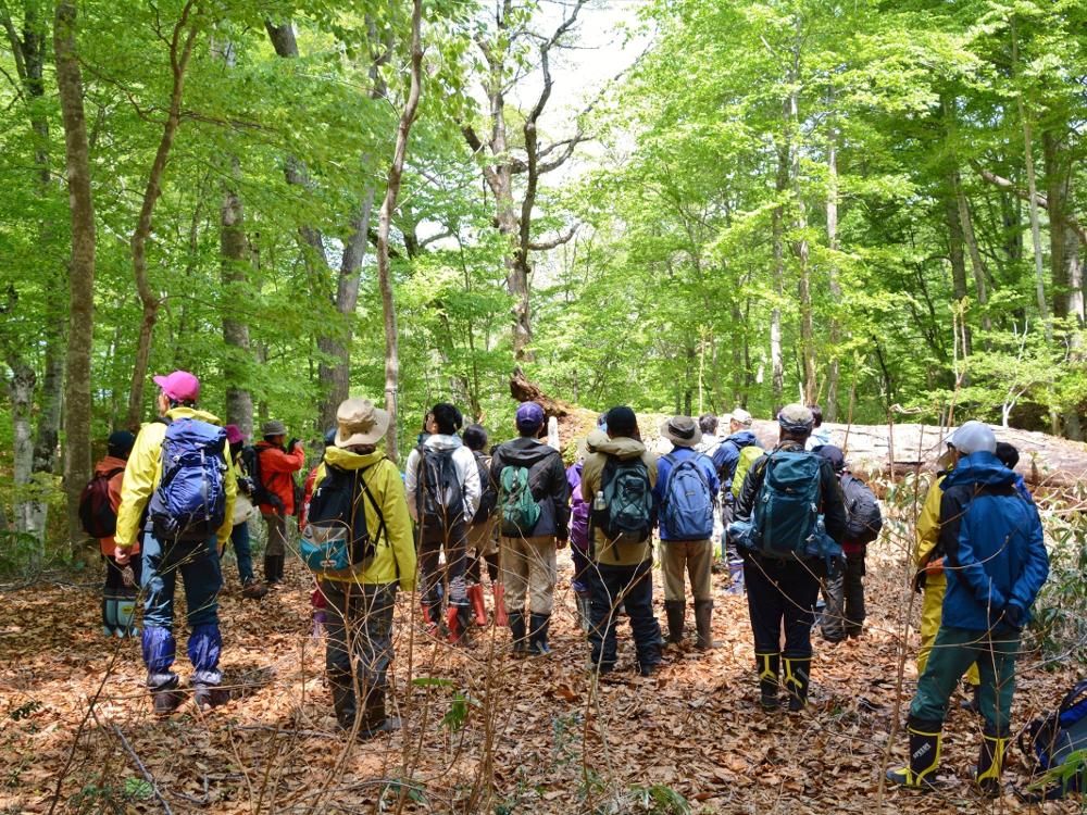 只見町ブナセンター 「ただみ観察の森」観察会写真